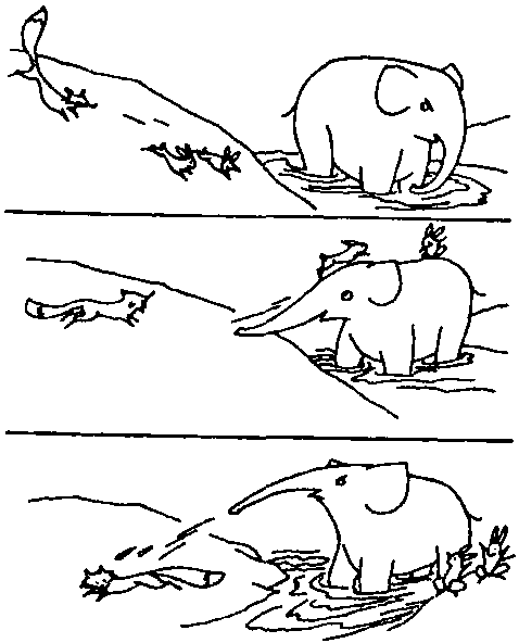 c.熊猫请小白兔过河玩.让 你的孩子想想看,小白兔能用几种 方法过河?